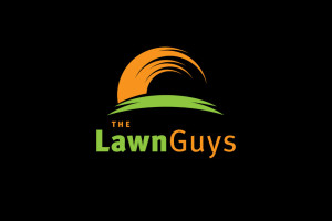Image_lawnguys